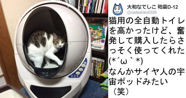 なんじゃこりゃあ〜!「猫用全自動トイレ」に猫も飼い主も大興奮