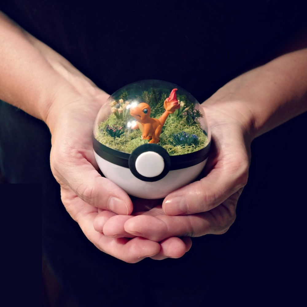 poke_ball_terrarium___charmander___small_by_the_vintage_realm-dak1mf1_R