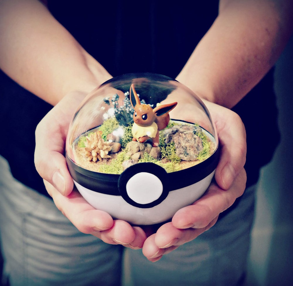poke_ball_terrarium___eevee___medium_by_the_vintage_realm-dai8vs1_R