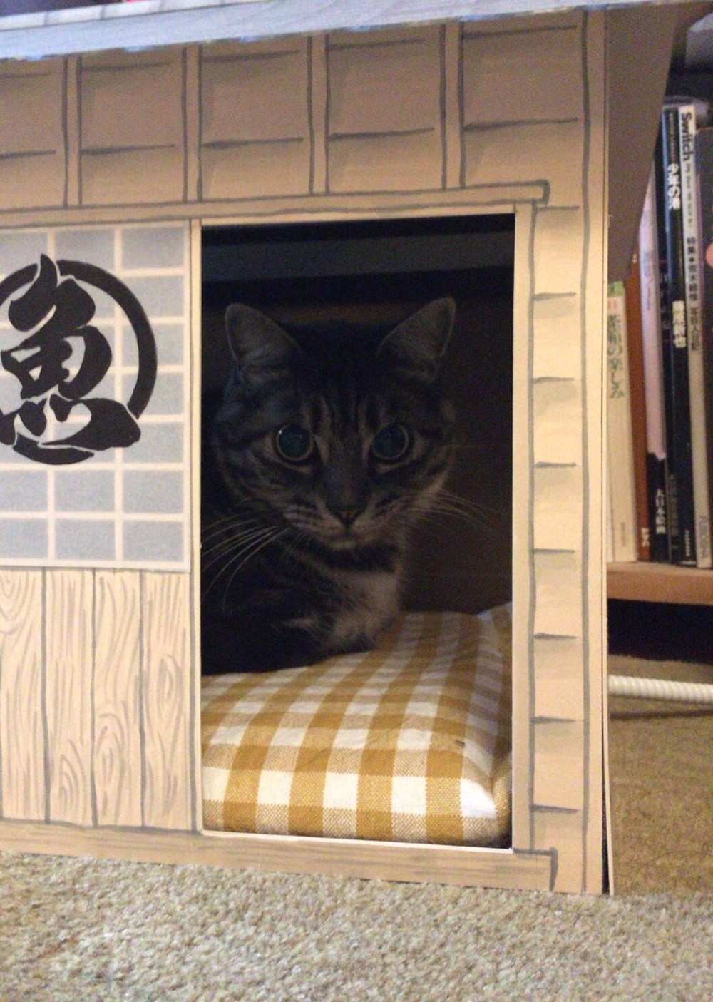 【持ち家だニャン♪】 ご主人が愛猫のために作った猫ハウスが超絶クオリティー