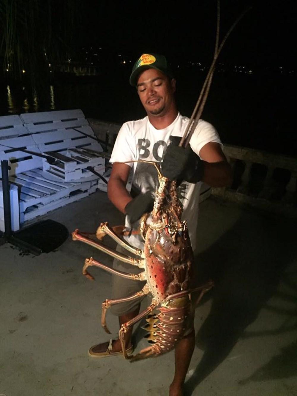 重量6キロ以上! バミューダ海域で捕獲されたヘビー級ロブスターが腰抜かすデカさ