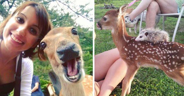 少しくらい分けてほしい!鹿はコミュ力が高すぎて誰とでも仲良しになれるらしい12選