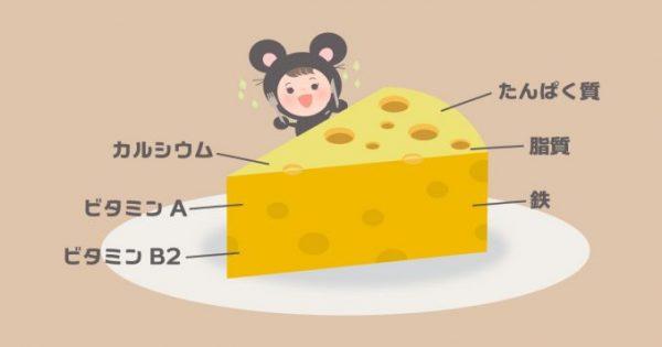 「二日酔い予防にはチーズが良い」美容と健康の為にチーズを食べるべき5つの理由
