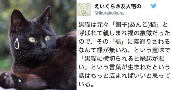 不吉なんかじゃない!「黒猫は縁起が悪い」という迷信が生まれた本当の理由に腰抜かす