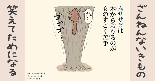 【ざんねんないきもの】ムササビは木からおりるのがものすごく苦手