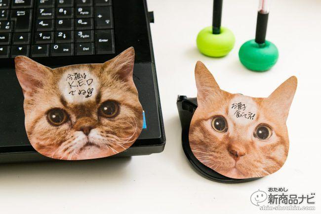 猫 メモ帳9