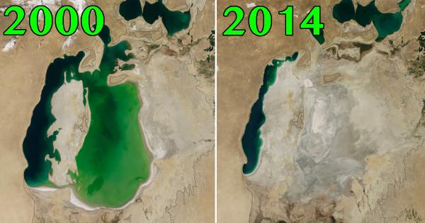 こんなに短期間で... 驚くべき「地球の変化」がわかる10枚の画像
