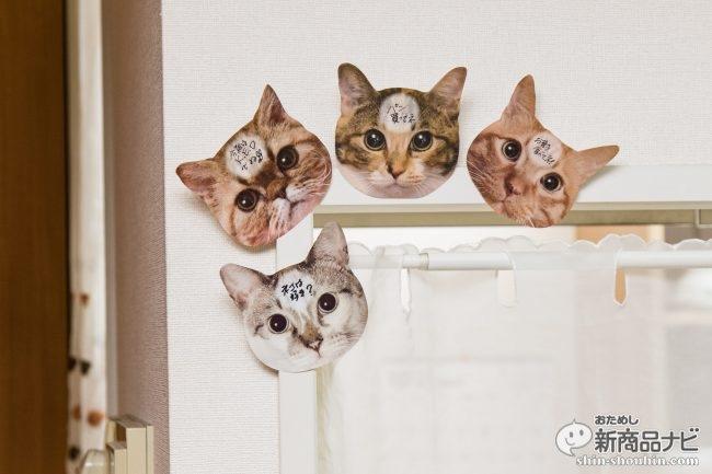 猫 メモ帳8