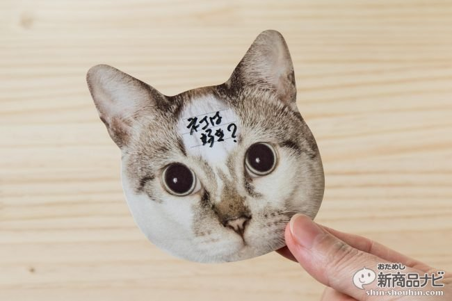 猫 メモ帳6