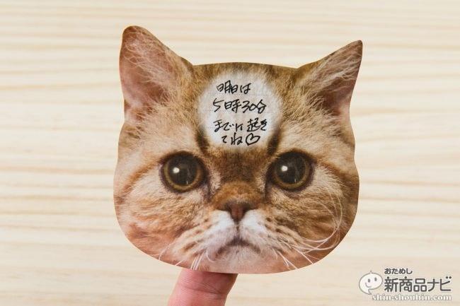 猫 メモ帳5