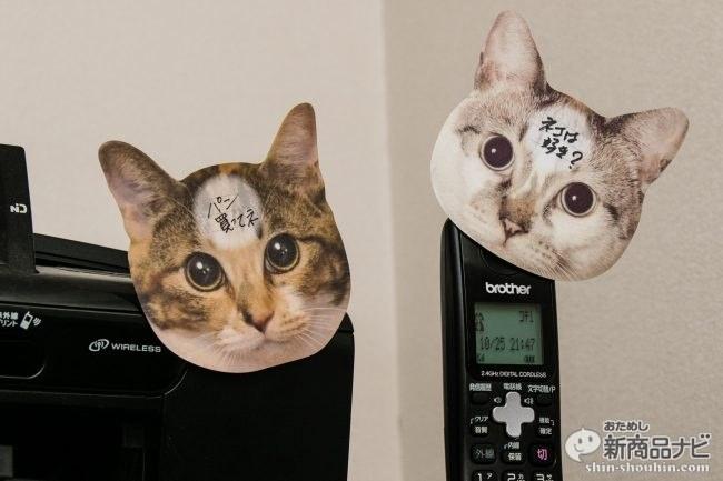 猫 メモ帳10