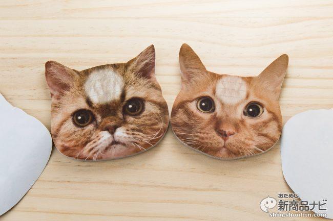 猫 メモ帳1