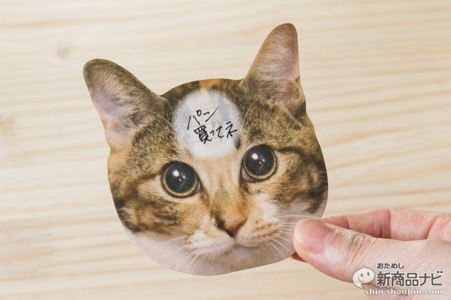 猫 メモ帳4