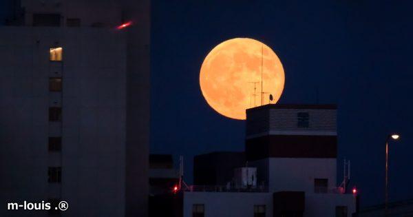 68年ぶり!11月14日は超巨大「スーパームーン」が夜空に輝く