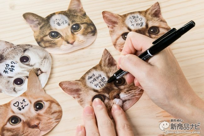 猫 メモ帳2