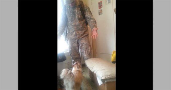 兵役から帰還した飼い主に、抱きついて「お帰り」を言うネコ!
