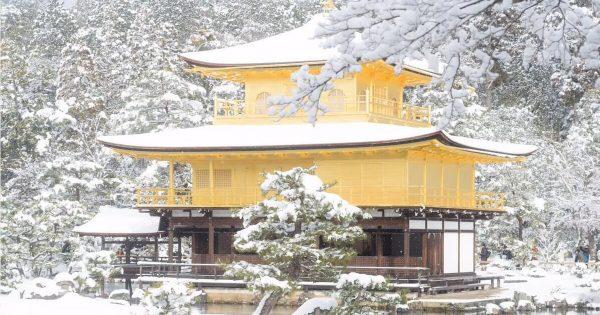 日本の冬は世界一!大寒波が生み出した美しすぎる雪景色(写真11枚)