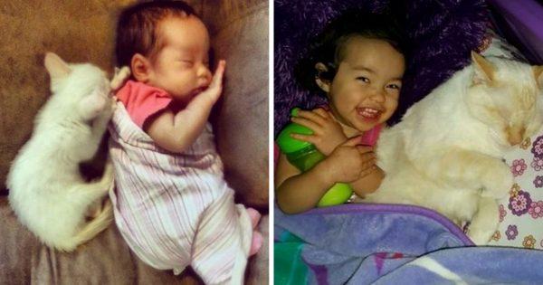 心の疲れが取れてくる!産まれてから毎日白猫と眠る女の子の記録が癒し効果絶大