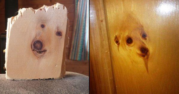 何度見ても「犬」にしか見えない木材 12選