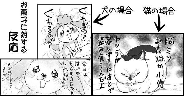 この極端な差! 犬と猫の性格の違いを描いた漫画が、なんか分かる!と話題