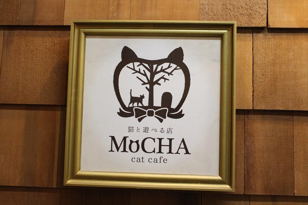 猫に愛されるモテアイテム! 「ピューレKISS」のモテ効果を猫カフェで検証