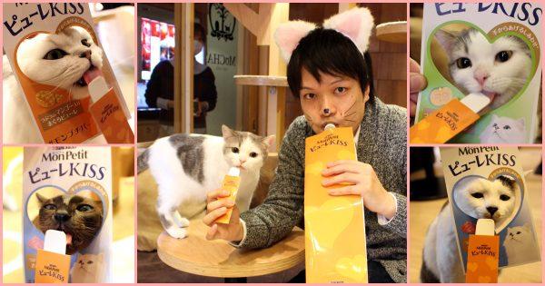 猫に愛されるモテアイテム! 「モンプチ ピューレKISS」のモテ効果を猫カフェで検証