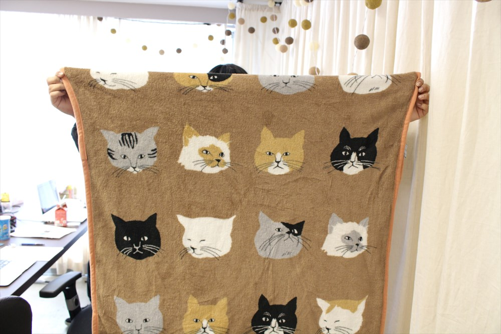 未確認ニャンコを丸裸に! 猫の種類を特定してくれるアプリ「What Cat」