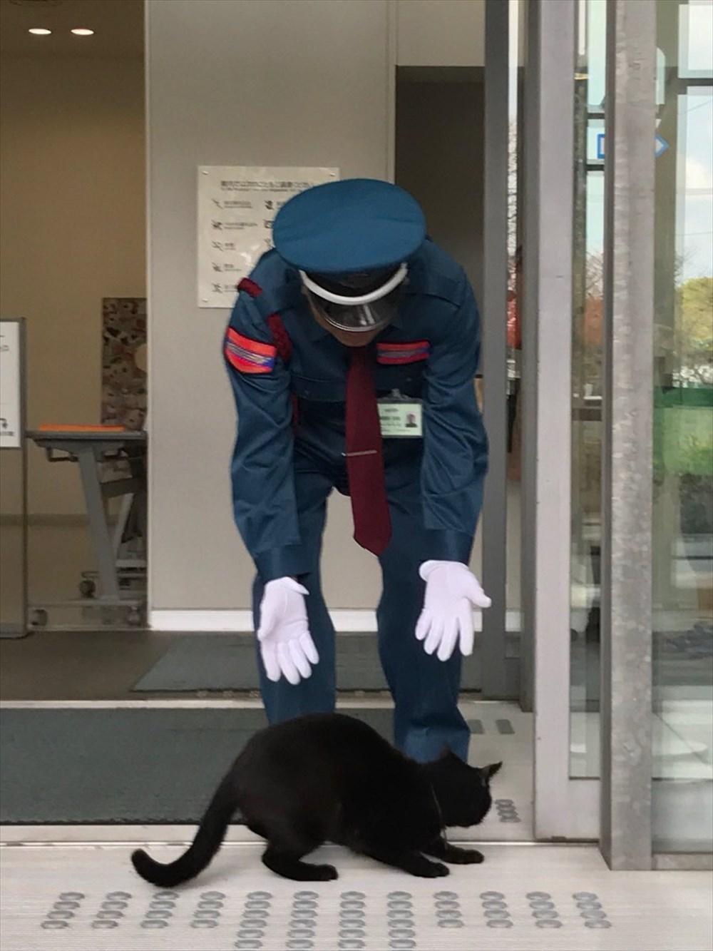 尾道市美術館に侵入を試みた黒猫と警備員さんの攻防戦にほっこり