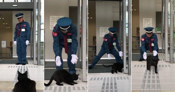 【キャッツアイ参上!】美術館への侵入を試みた黒猫と警備員さんの攻防戦にほっこり