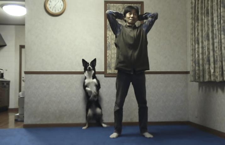 犬 スクワット1