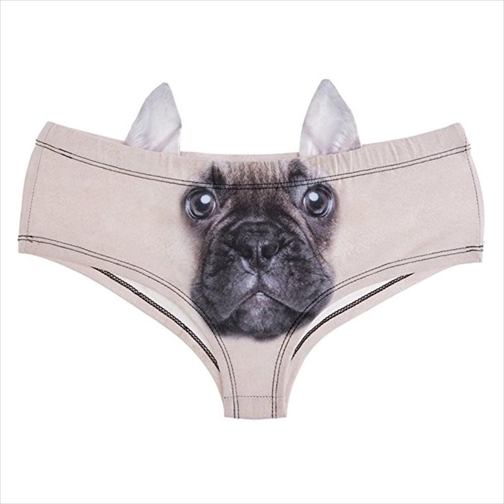 「わぁ~こんな所にブタさん発見!」 お耳ぴょんぴょん動物パンツに男子まっしぐら
