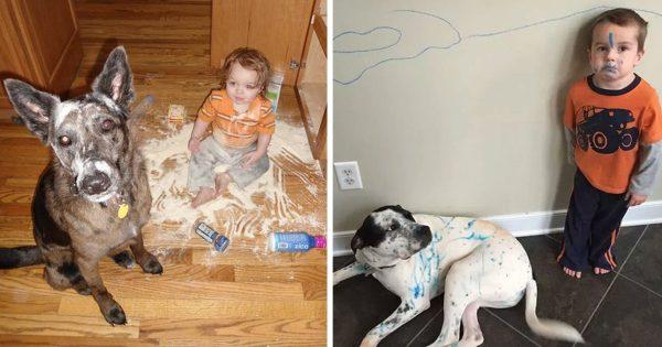 子どもと犬を一緒に生活させてはいけない12の理由