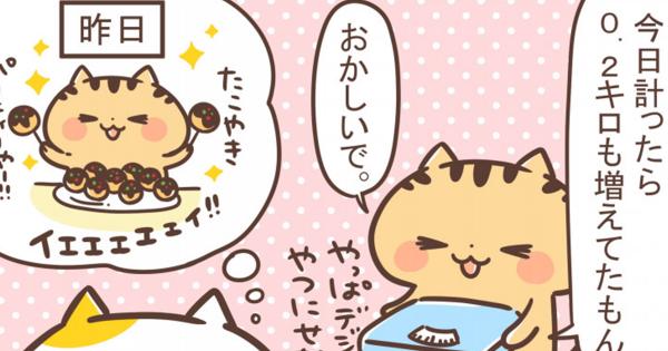 【体重計の故障??】関西弁にゃんこ 第41弾