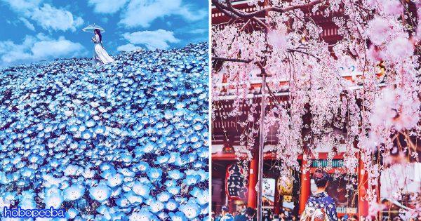 やっぱり日本に生まれてよかった!ロシアの写真家が再確認させてくれた日本の魅力