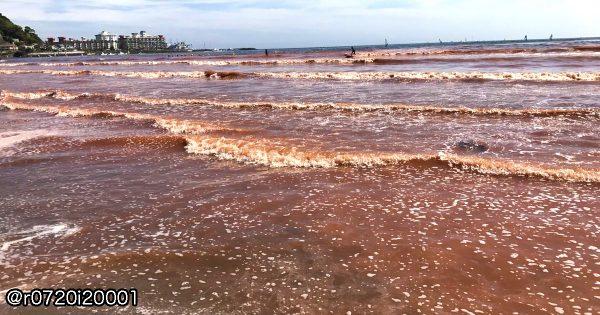 鎌倉の海が真っ赤に!GWで賑わう海岸が騒然とする。原因は赤潮か
