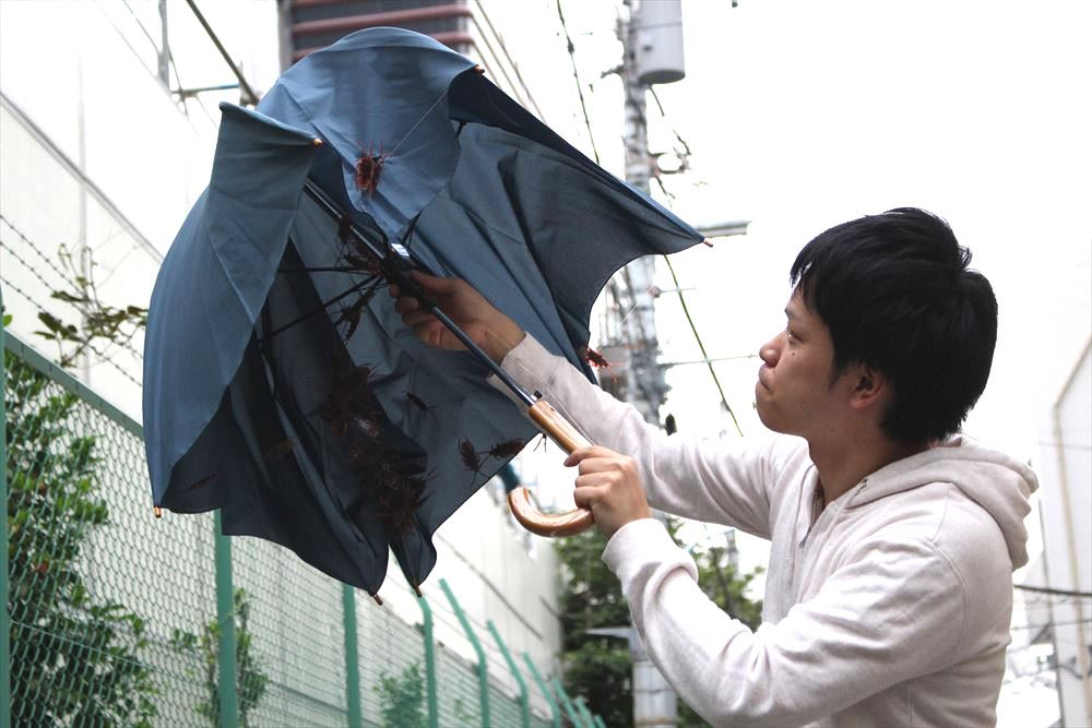 絶対に盗まれない傘を考える会