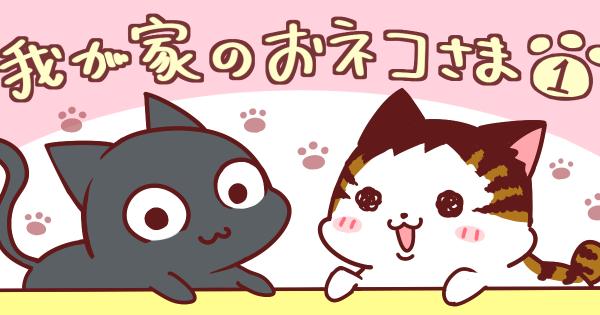 【可愛いハプニングが盛り沢山♫】我が家のおネコさま  第1話