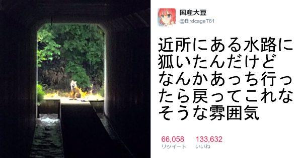 【トンネルの向こうは・・・】ジブリで出てきそうな景色 8選