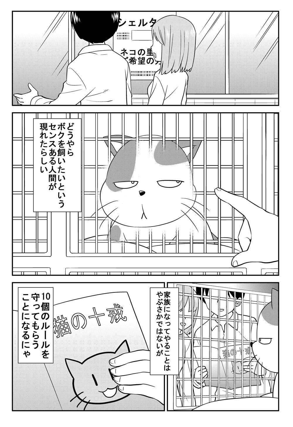 猫の十戒-1