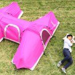 Hだけどエッチじゃないよ!社内の冷ややかな視線を受けつつ開発された「H型テント」