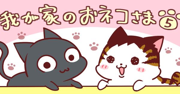 【テンちゃんのおパンツテロ】我が家のおネコさま  第5話