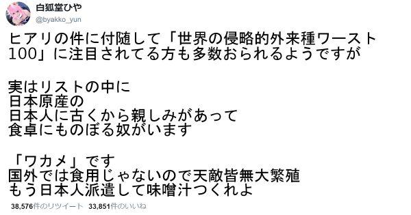 【ワカメの天敵は日本人だけ】明日すぐに自慢したくなる8つの雑学