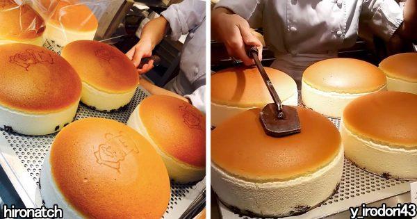 フワッフワでぷるっぷる!見たら絶対食べたくなる柔らかチーズケーキに発狂