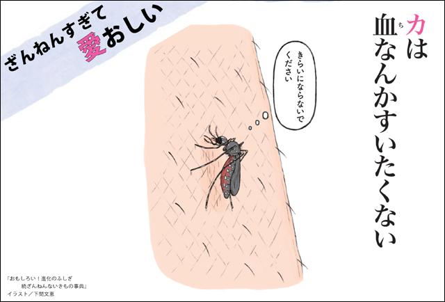 1週目_蚊_画像
