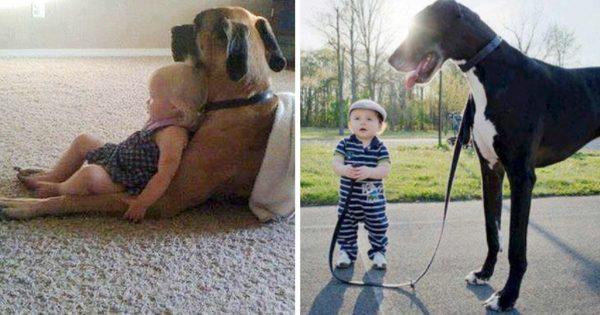 癒やし効果も2倍!互いに自分が親だと思ってる犬と子どものベストショット12選