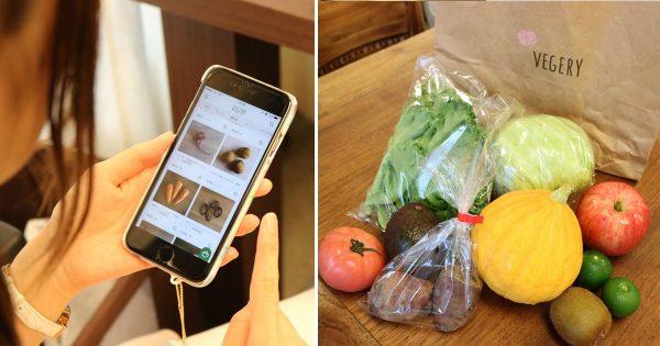 オーガニック野菜が指一本で届く。インスタで話題の「朝ベジ」でお腹も心も大満足