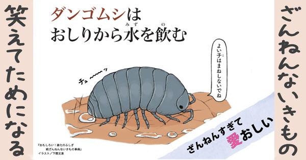 【ざんねんないきもの】ダンゴムシはおしりから水を飲む