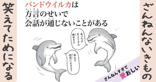 【ざんねんないきもの】バンドウイルカは方言のせいで会話が通じないことがある