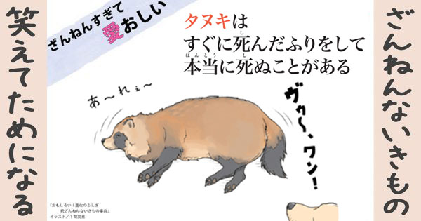 【ざんねんないきもの】タヌキはすぐに死んだふりをして本当に死ぬことがある