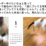 こんなカレンダー商品化して欲しい!「ブレた猫のカレンダー」